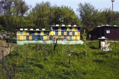 cebelnjak-rb093